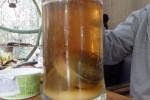 kibirėlis arbatos :)