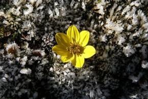 Pavasario seminaro prisiminimai