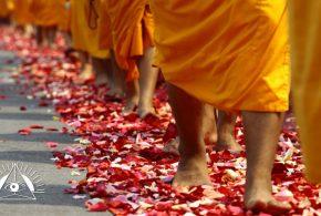 Vaikščiojimo meditacija Alytuje (07.02)