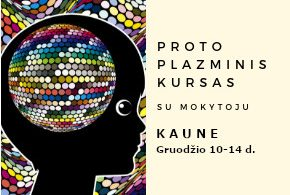 Proto Plazminis kursas Kaune