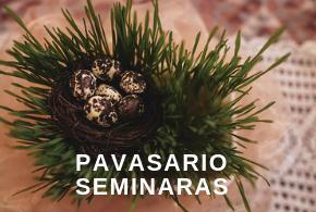 Pavasario seminaras