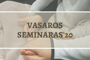 Vasaros seminaras'20